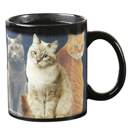 One Cat Leads To Another Heat Change Mug