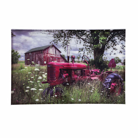 Remember Big Red Outdoor Stretched Canvas